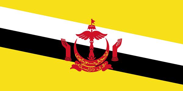 Vận chuyển hàng đi Brunei 1