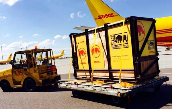 Chuyển phát nhanh DHL đi Brunei 1